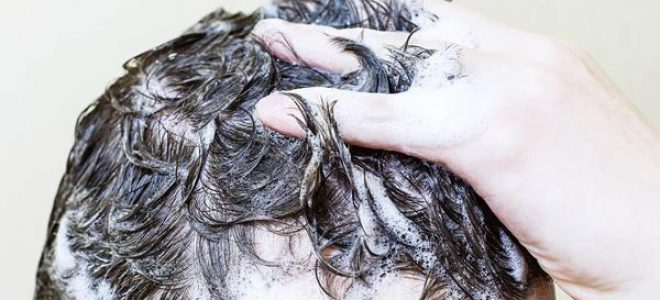Shampoo That Makes Hair Grow